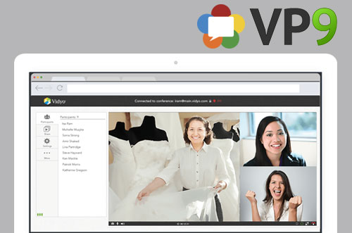 2013 VidyoWeb WebRTC and VP9
